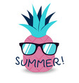 summer banner with fruit in glasses place for vector image