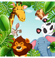 wild animals and leaves around the border vector image vector image