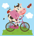 cute cow and ladybug rides bicycle vector image