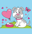 cute dog with heart balloon vector image