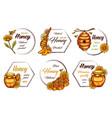 decorative labels for honey product vintage frame vector image