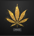 golden cannabis leaf silhouette vector image