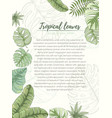 hand drawn tropical palm leaves card vector image
