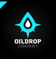 logo compass with drop of water vector image vector image