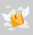 package box with wings vector image vector image