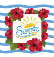 summer time and hibiscus vector image vector image