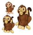 three cartoon monkey on white background vector image vector image