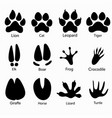 various traces of animals vector image vector image