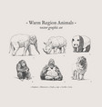 warm region animals vintage set vector image vector image