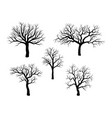 bare tree winter set design isolated on white vector image