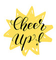 cheer up brush lettering vector image