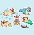 funny pug dog sticker set vector image vector image