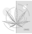 realistic hand drawing and geometric cannabis vector image