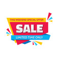 sale - concept banner vector image