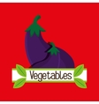 vegetables nutrition food fresh vector image