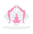 yoga abstract lotus pattern pink silhouettes set vector image