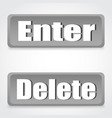 button enter delete the gray background with vector image