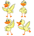Four ducklings vector image vector image