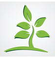nature concept green leaves vector image