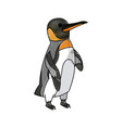 penguin emperor pole south bird animal vector image