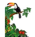 Toucan bird in the tropical forest vector | Price: 3 Credits (USD $3)