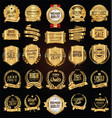 golden labels and badges collection vector image vector image