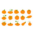 orange pumpkins in flat style isolated on white vector image vector image