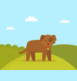 brown puppy on walk colorful vector image vector image
