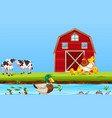 farm animal in nature vector image vector image