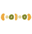 pieces of fruit vector image vector image
