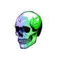skull in color paint design vector image vector image