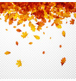 Autumn background with orange leaves