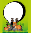 border template with two deers vector image vector image