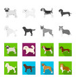 dog breeds monochromeflat icons in set collection vector image vector image