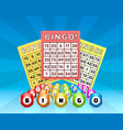 lottery bingo game balls with numbers and vector image