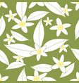 seamless pattern of orange blossom flowers vector image