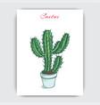 sketch hand drawn cactus card vector image vector image
