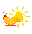 sun and orange and cherry vector image