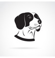 beagle dog head on a white background pet vector image vector image
