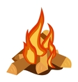 Bonfire isolated vector image vector image