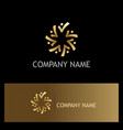 circle gold people logo vector image
