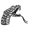 head poisonous snake in engraving style design vector image vector image
