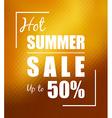 Hot summer sale over sunny golden background vector image vector image