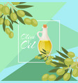 olive oil glass pitcher with black and green vector image vector image