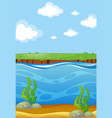 river scene with underwater view vector image