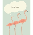thinking flamingos vector image vector image
