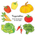 Color vegetables icon