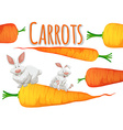 Fresh carrots and two rabbits vector image vector image
