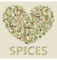 heart from spices vector image vector image