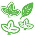 Leaf Variations vector image vector image